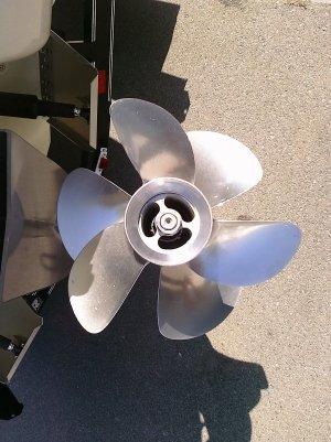 Катер Stingray 250